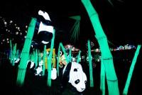 『チャイナランタンフェスティバル』で展示されている「パンダの楽園」