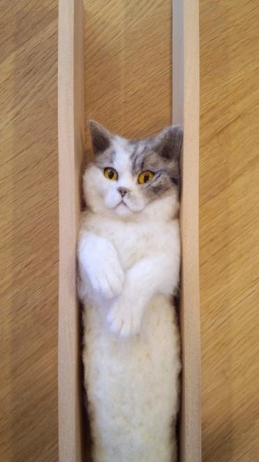 羊毛フェルト 挟まってる猫