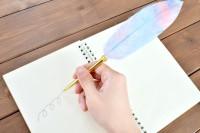 色とりどりの羽根ペン『クイルペン』