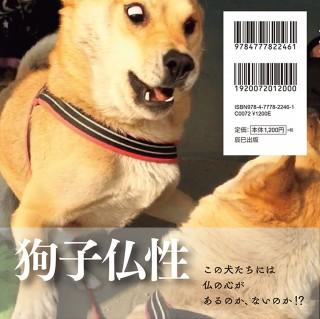 (C)辰巳出版
