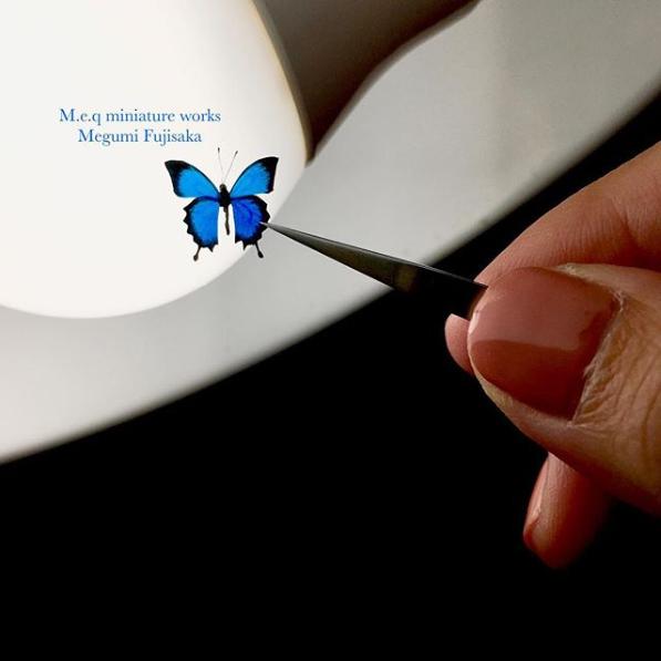 【ユリシス】翅脈検査。 描けてない部分がよく見えるそう。制作&写真/meq