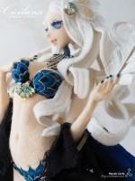 孔雀姫『Ciciluna』