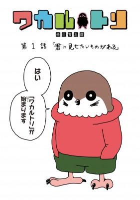 「ワカルトリ」柴田賢志郎