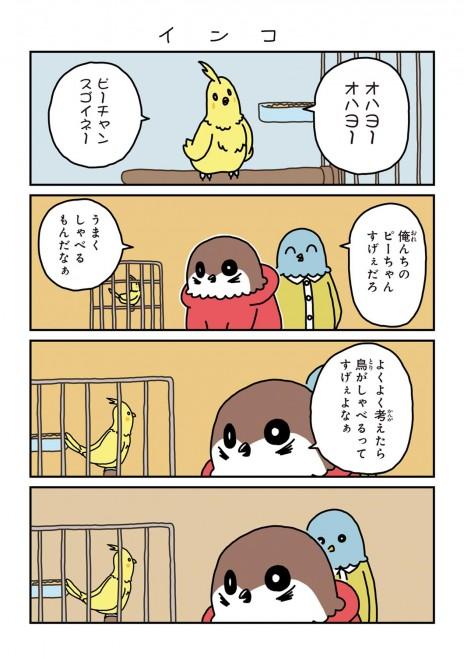 「ワカルトリ」1話 13/14