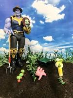 THANOS's Infinity Farm小さいけれど、なんでも作れる畑ができました。(1/4)
