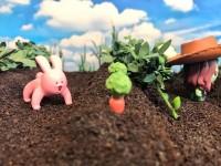 THANOS's Infinity Farm小さいけれど、なんでも作れる畑ができました。(4/4)