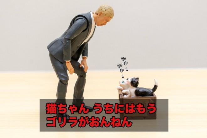 松本さんと捨て猫(1/4)