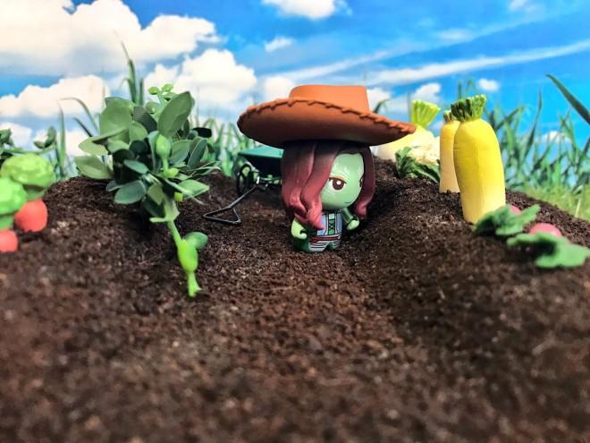 THANOS's Infinity Farm小さいけれど、なんでも作れる畑ができました。(2/4)