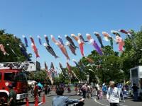 同フェアでは消防車が来場する日が一番にぎわう 写真提供:「すみだ鯉のぼりフェア」すみだカットクラブ