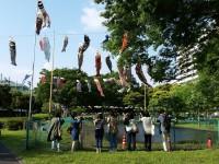 鯉のぼりを見上げる人々 写真提供:「すみだ鯉のぼりフェア」すみだカットクラブ