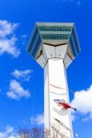 五稜郭タワーになびくマグロのぼり1 写真提供:「Yプロジェクト?」