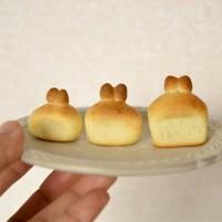 「うさぎ食パン 昨日から3回焼いたけどマトリョーシカみたいになりました(左から1回目 牛乳以外、同じ分量と温度で焼いたけど(発酵時間と牛乳の分量は調節)こんなに変わってくるからパンは難しい どれもかわいいのだけど...」