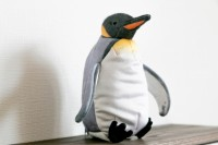 オウサマペンギンの全体像