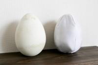 本物のオウサマペンギンの卵(写真左)とぬいぐるみの卵(写真右)