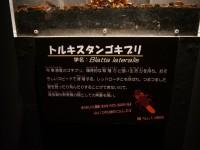 【閲覧注意】「キモい展2」