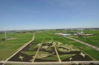 『未来へつなぐ古の軌跡』世界最大の田んぼアートとしてギネス認定