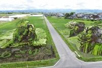 画像提供:田舎館村