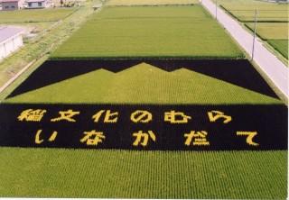 初期の田んぼアートはこんなにシンプルだった…! 画像提供:田舎館村