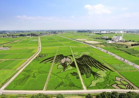 埼玉『大いなる翼とナスカの地上絵』画像提供:行田市