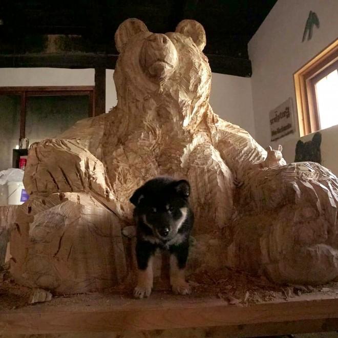 月くんはこの大きなクマの彫刻とともに育った