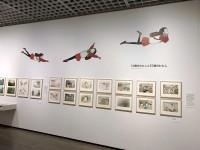 『おもひでぽろぽろ』(C)1991 岡本螢・刀根夕子・Studio Ghibli・NH=『高畑勲展─日本のアニメーションに遺したもの』東京国立近代美術館で開催中(7月2日〜10月6日)