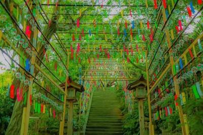 春日神社(福岡県)画像提供:@1216_rikuuuuさん