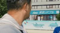 東急リバブルの新CM「イルカ」篇より