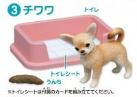 『アニア Friends いぬ』は全6種/3.チワワ(税抜600円)