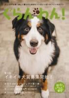 『ぐらんわん!』Vol.36 表紙:エルちゃん(バーニーズマウンテンドッグ・当時7歳)