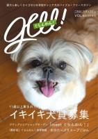 『ぐらんわん!』Vol.44 表紙:くまちゃん(ペキ×シーズーMIX・当時9歳)