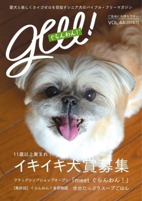 最新刊表紙モデル犬はくまちゃん(MIX・9歳)。 お散歩中にも持ち帰りやすいA5サイズ。