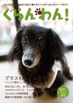 『ぐらんわん!』Vol.6 表紙:フィルくん(M・ダックス・当時18歳)