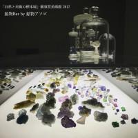 2017年横須賀美術館「自然と美術の標本展」に参加