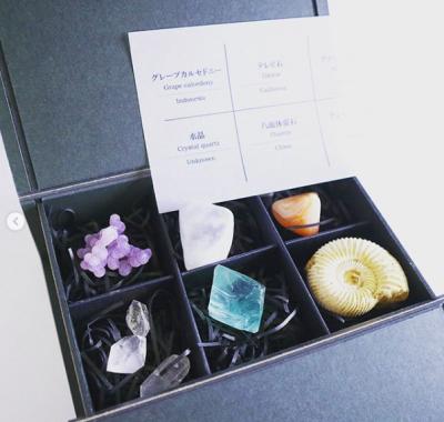 『ぶどう石』などの鉱物標本セット 画像提供:ウサギノネドコ(@usaginonedoko_kyoto)