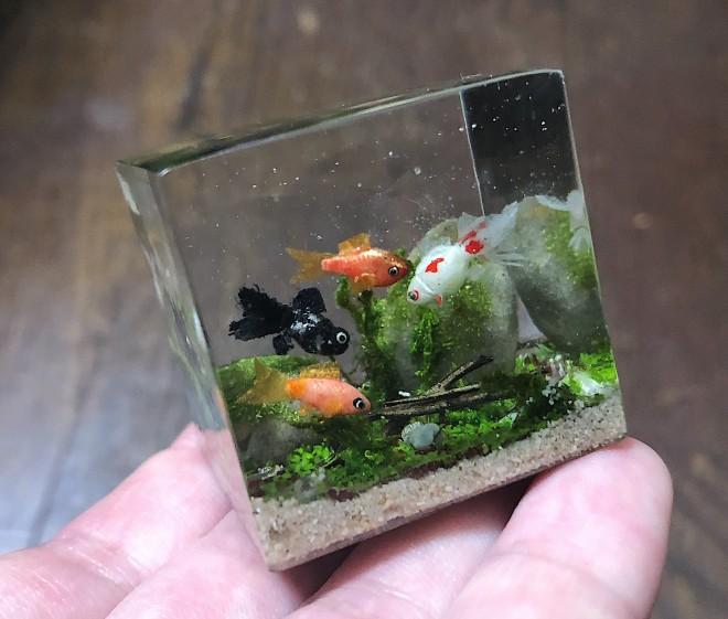 小さな金魚水槽。制作・写真/sawamin