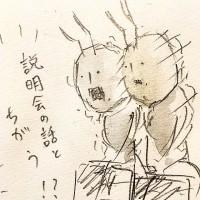 働きアリの労働4/『ゆるふわ昆虫図鑑』(作者:じゅえき太郎)より