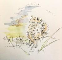 勇敢なコオロギ4/『ゆるふわ昆虫図鑑』(作者:じゅえき太郎)より