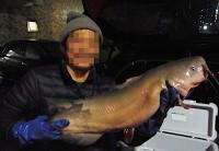 茨城県・霞ヶ浦で捕獲したアメリカナマズは、工事現場の臭い…