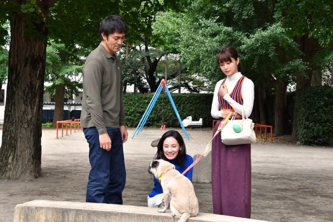 ドラマ『まだ結婚できない男』(関西テレビ・フジテレビ系)で、パグ犬・タツオ役を好演する田中太郎くん(中央) (C)カンテレ