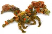 モクズショイ「その名の通り全身にカイメンや海藻、その他ありとあらゆる磯の藻屑を大量に付着させて完全武装しており、個体ごとのファッションセンスの違いも楽しみの一つ」