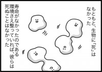 種田ことびさん(@kotobi00)のインスタ漫画『ゆるゆる生物日誌』より「死の遺伝子」