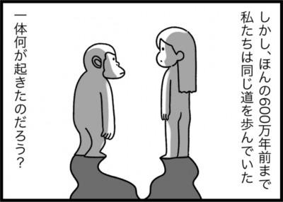 「人類進化の謎」より