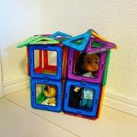部屋の隅にペット可の一軒家が建っていた