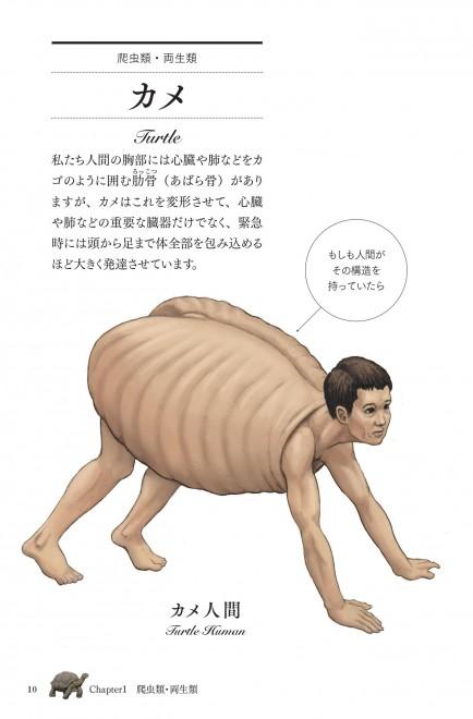 (「カメの甲羅はあばら骨」より)