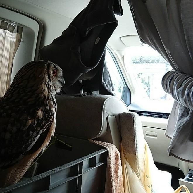 家族と一緒にドライブも/KAZUさんInstagram(@kazu.862)より