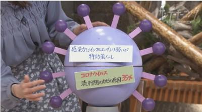 「新型コロナウイルス」(2020年1月19日)より