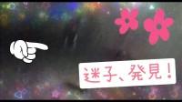 ホラーが苦手な人も楽しめる「株式会社闇」の演出(2月7日公開映画『犬鳴村』より)