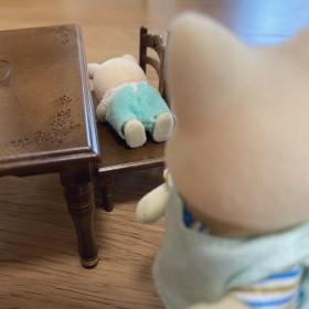 夕方やけに静かだと思ったら机の影で寝ている