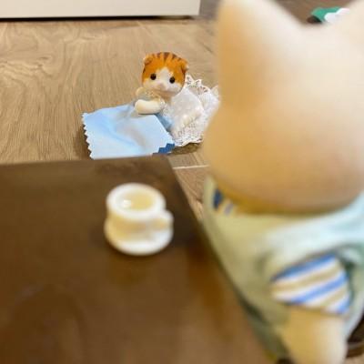 「お茶を入れた途端の起床」(画像提供:えんどうちほさん)