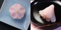 (左)『さくら』 練り切り製 小豆渡し餡 (右)『花衣』外郎製 桜餡